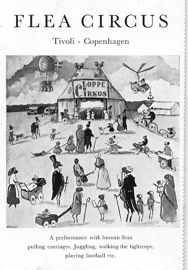 Postcard of the Tivoli Flea Circus contributed by Dan Goodsell